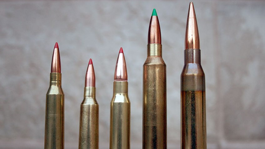 Top 5 Cartridges For Hunting and Long Range